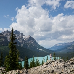 The Steffens' Engagement Session at Peyto Lake in Banff National Park